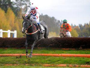 Lavirdan och Christopher Roberts hoppar sista hindret före Amber Hill   ST ERIKS PRIS   Täby 121014   Foto: Stefan Olsson / Svensk Galopp