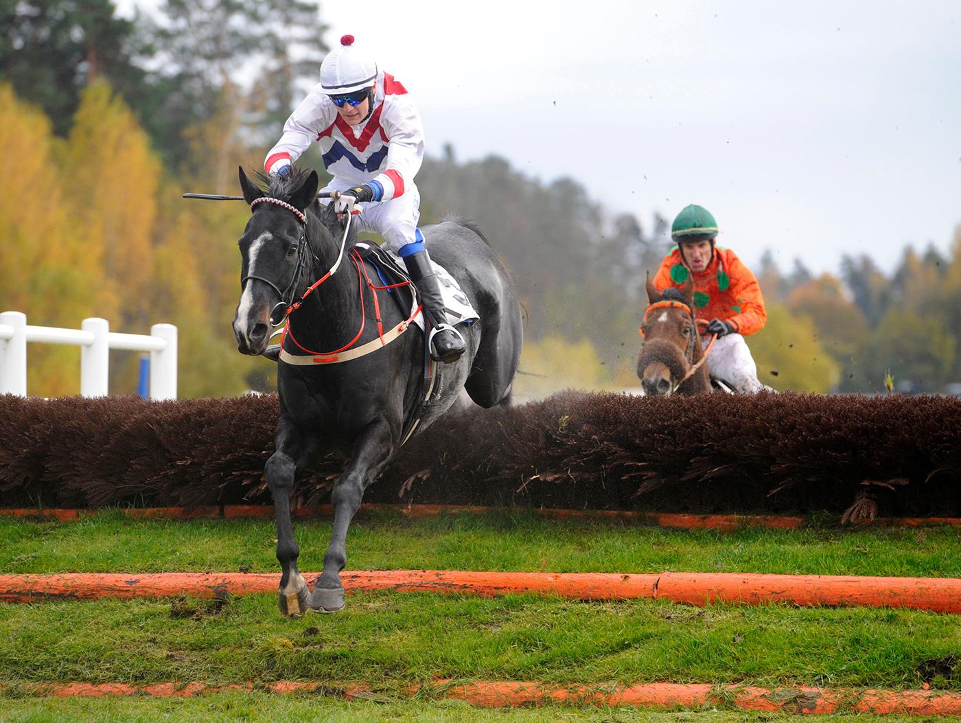 Lavirdan och Christopher Roberts hoppar sista hindret före Amber Hill | ST ERIKS PRIS | Täby 121014 | Foto: Stefan Olsson / Svensk Galopp